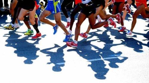 running partner 2